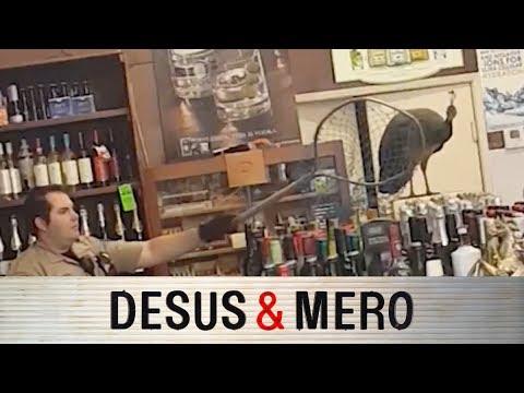 Peacock Throws Tantrum in Liquor Store