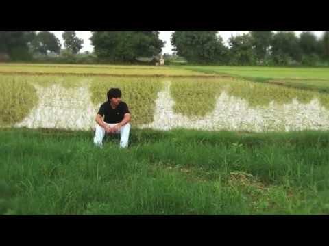 The Polyethylene - A Short Film
