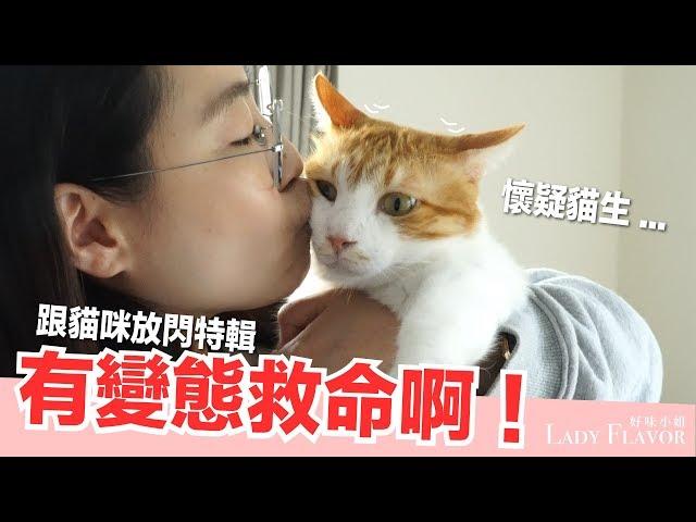 情人節有貓就夠啦~跟貓放閃大挑戰【好味貓日常】EP35