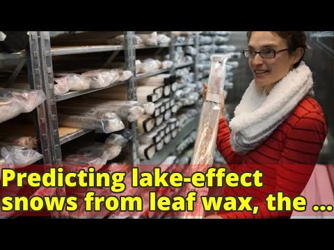 Predicting lake-effect snows from leaf wax, the 'weather stations' of history