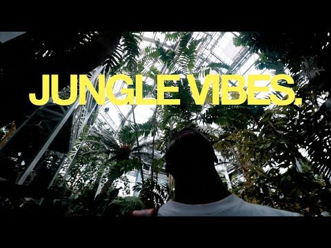 JUNGLE VIBES.