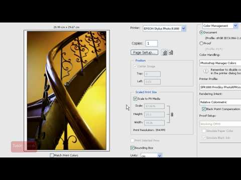 Printing With Correct Color / ICC Profile - Adobe Photoshop Tutorial [In-Depth]