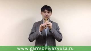 Вторый ВИДЕО УРОК по игре на флейте Сопель в Ре