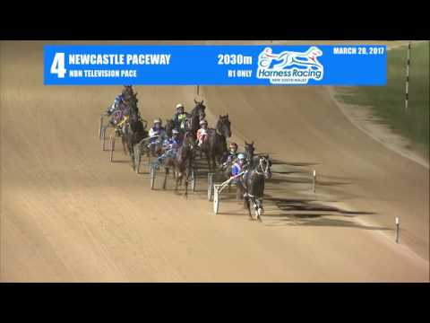 NEWCASTLE - 28/03/2017 - Race 4 - NBN TELEVISION PACE