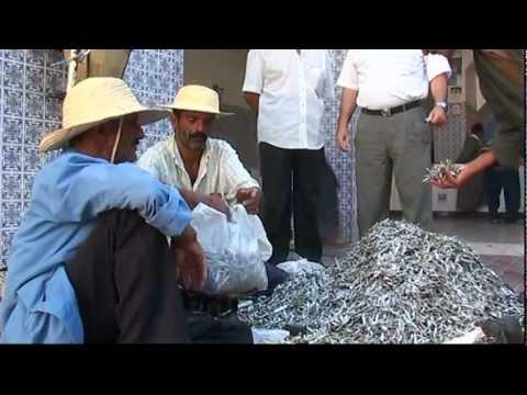 DJERBA - HOUMT SOUK il mercato del pesce حومة السوق  [HD]