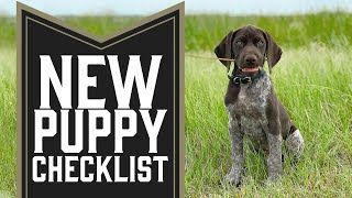 5 Things You Need To Do With A New Puppy