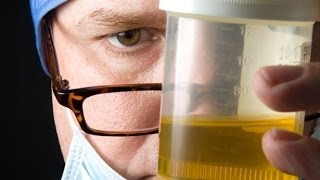 How to pass a drug test for a job. Pass Pre employment drug screen. TheCoolFactShow Ep. 6