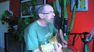 Joe Dassin - La fleur aux dents - Guitar Cover