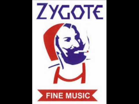 Zygote - I Did It For You