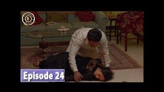 Zard Zamano Ka Sawera Episode 24 - Top Pakistani Drama