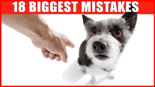 18 Common Mistakes Dog Owners Make