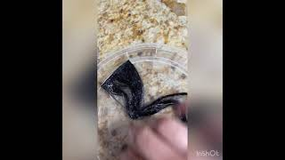 How to remove gorİlla glue from hair