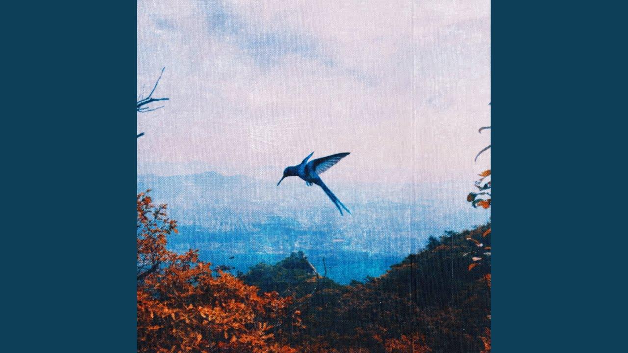제이키(J;KEY) - HUMMINGBIRD (Feat. greenbeige)