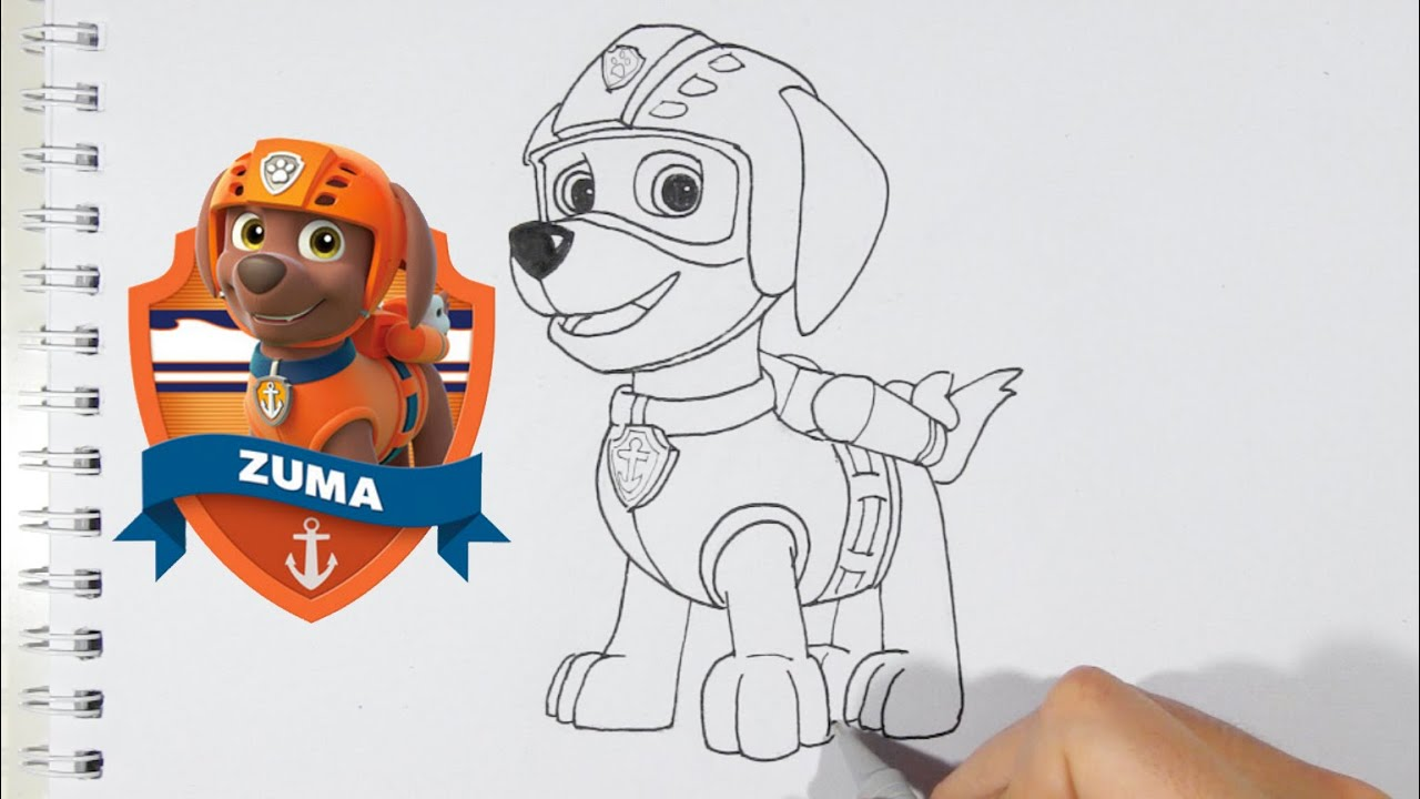Como Desenhar O Zuma Da Patrulha Canina Personagens Do Desenho