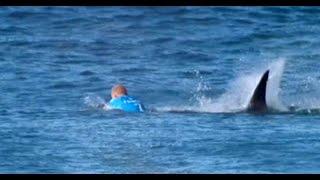 Surfing Champion Fanning Entkam Nur Knapp Einem Hai-angriff.