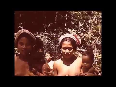 Bali before Japanese Invasion - History of Bali