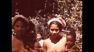 Bali before Japanese Invasion History of Bali