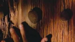 Francisco Céspedes - Vida loca (Video)