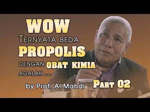 WOW!!! Ternyata Beda PROPOLIS Dengan Obat Kimia Adalah...