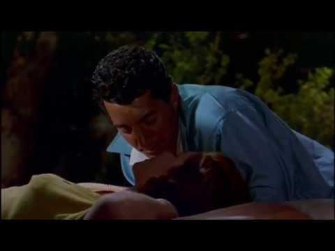 Dean Martin - Let's Be Friendly (Movie Version)