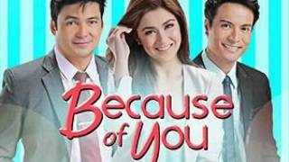 christian bautista you and me (because of you theme song )