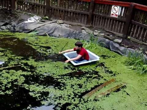 3 guys swimming in the frog pondpart 1