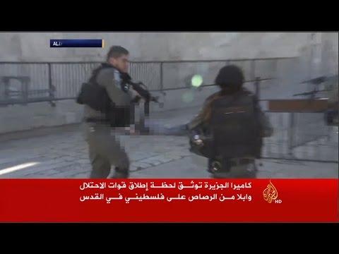 תיעוד הריגת הדוקר, מוחמד אבו חלף, בשער שכם, מתוך כתבת אל ג'זירה  -  צילום: אל-ג'זירה