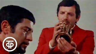 Веселое обозрение. Фильм-концерт (1976)