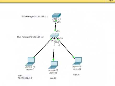How to configured Management VLAN on Cisco Switch .