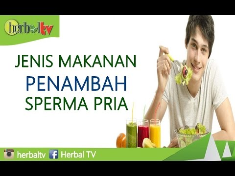 jenis makanan penambah sperma pria herbal tv youtube