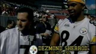Super Bowl XLIII Interviews with Ross Steelers Cardinals