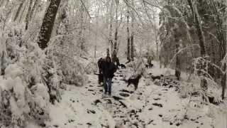 Belgian Gordon Setter Club walk in the Ardennes  December 2012
