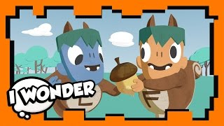 I Wonder - Episode 7 - Stampylonghead (Stampy Cat) and Wizard Keen - WONDER QUEST