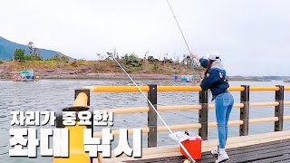[SUB] 감성돔을 잡으러 처음 해보는 좌대 낚시! k…