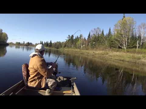 Fishing In The Aroostook River