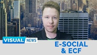 E-SOCIAL E ECF | Visual News