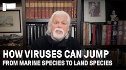 Paul Watson, leading marine wildlife conservationist, discusses the ecology of viruses | Participant