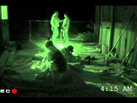 Paranormal Grove