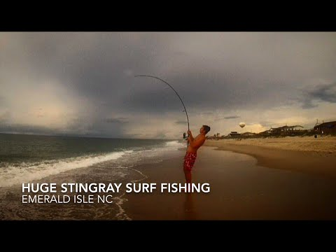 Huge stingray surf fishing 9 5 15 youtube for Nc surf fishing report