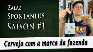 Zalaz Spontaneus Saison nº1 | Degustação Doutor Breja | DB#243