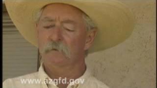 Cattle Ranching in Arizona