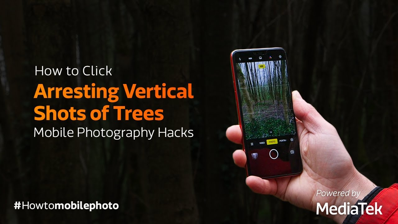 How to Click Arresting Vertical Shots of Trees | Mobile Photography Hacks