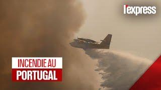 Incendie au Portugal : des forêts détruites par les flammes