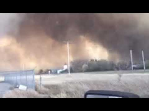 Burstall Wildfire