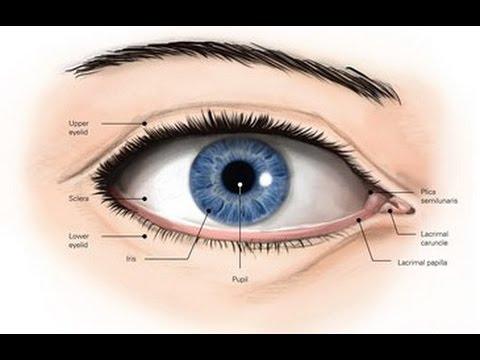Техники остеопатии на глазах - улучшение зрения, дальнозоркость и ...