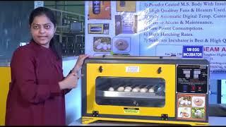 Sunbeam Egg Incubator Working Principle - Capacity 100 Eggs