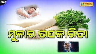 Mulara Upakarita | ମୂଳାର ଉପକାରିତା | Odia Health Tips | Health Park