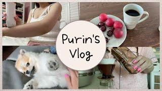 여유로운 일상 vlog (with.쿠키) ⎮ 재택근무,…