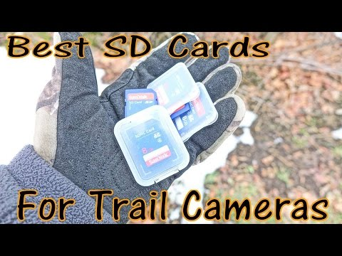 Best SD Cards For Trail Cameras