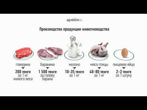 Субсидирование развития животноводства
